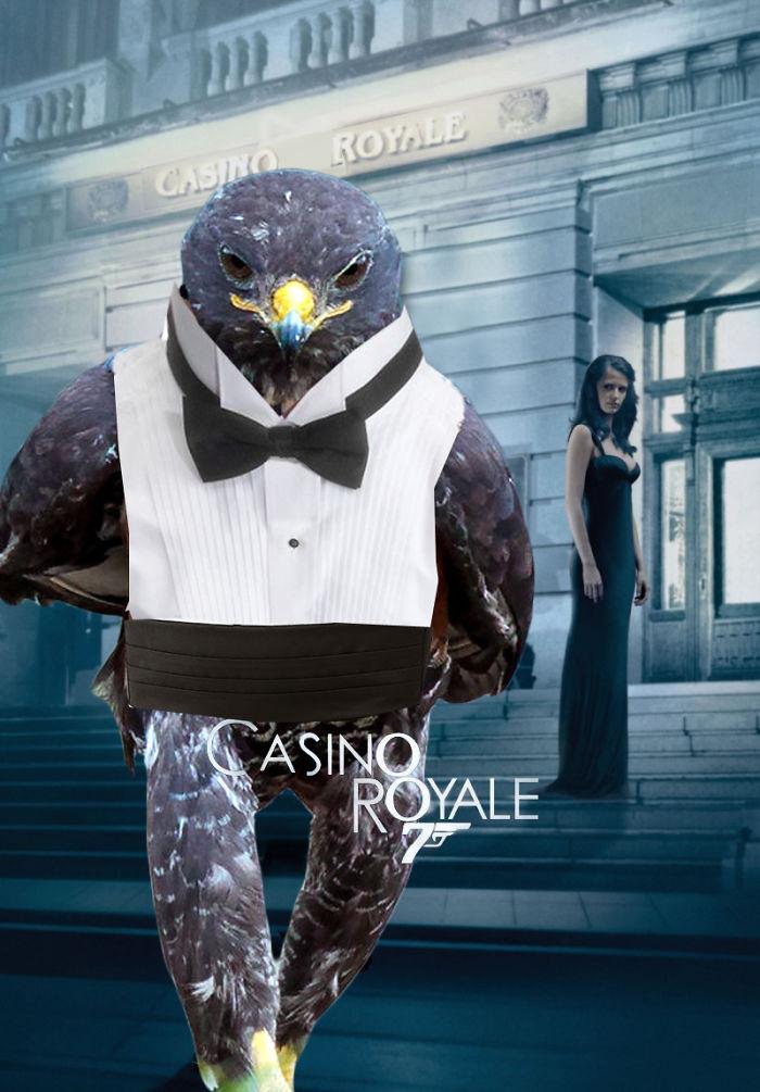 AD-Funny-Hawk-Photoshop-Battle-49