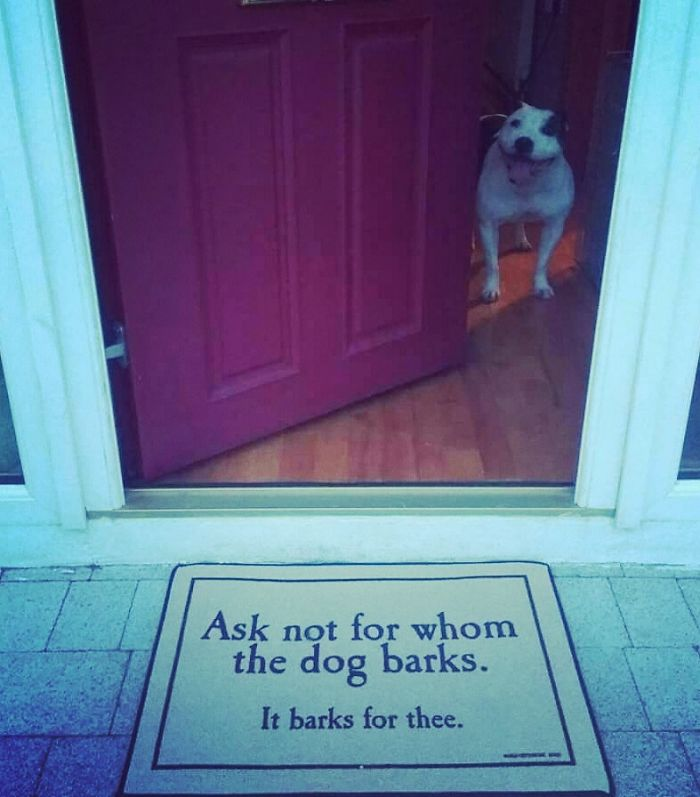 20  creative and hilarious doormats that will make you