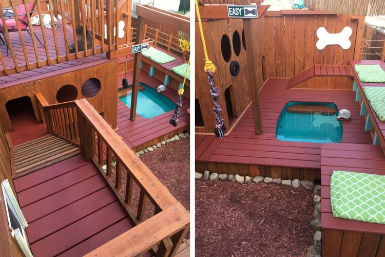AD Dog Playground Backyard Aaron Franks Thumbnail | Architecture U0026 Design