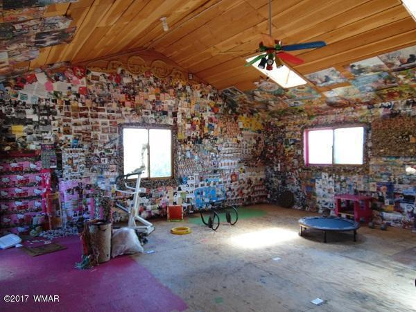 Inside this Unassuming Log Cabin is the Craziest Cat House You Will Ever See