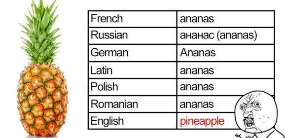30+ Hilarious Reasons Why The English Language Is The Worst
